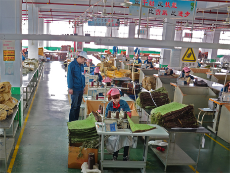 Manufacturing_Sewing